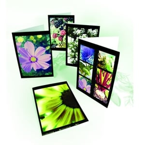 Gift Cards - Set of Five